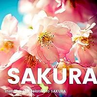 桜にまつわるインストゥルメンタルBGM -Theme Of SAKURA-