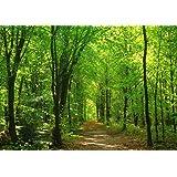 絵画風 壁紙ポスター (はがせるシール式) 森林と小道 森林浴 新緑 散歩道 目の保養 癒し 気分転換 キャラクロ SN…