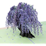 Paper Love Wisteria Pop Up Card, 3D Popup Greeting Cards, for Mothers Day, Spring, Fathers Day, Graduation, Birthday, Wedding