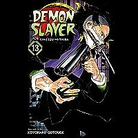 Demon Slayer: Kimetsu no Yaiba, Vol. 13: Transitions (Englis…