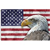 Pickako USA Vintage American Flag Bald Eagle 4th of July Memorial Independence Day 3x5 Foot Flag, Double Stitched 3 x 5 Ft Fl