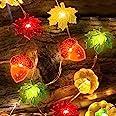 TURNMEON 3D Pumpkin Maples Acorns String Lights Fall Decor, 10Ft 30LED Warm White Lights Battery Powered Fall Lights Decorati