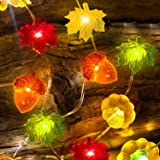 TURNMEON 3D Pumpkin Maples Acorns String Lights Fall Decor, 10Ft 30LED Warm White Lights Battery Powered Fall Lights Decorati
