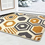 "Color&Geometry Doormat, Outdoor Indoor Waterproof, Non Slip Washable Quickly Absorb Moisture and Resist Dirt Rugs(24""x36"")"