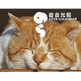 2019猫カレンダー のら ([カレンダー])