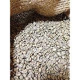 松屋珈琲 コーヒー生豆 タンザニア (キリマンジャロ)AA (1kg袋)