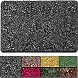 BEAU JARDIN Indoor Doormat Absorbent Latex Backing Non Slip Small Front Door Inside Floor Mud Dirt Trapper Mats Cotton Entran
