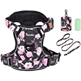 Petmolico No Pull Dog Harness Set, 2 Leash Attchment Easy Control Handle Reflective Vest Dog Harness Small Breed, Small Dogs