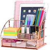 Upgraded Desk Organizer for Women, Cute Mesh Office Supplies Accessories Essentials Caddy with Drawer for Home & Office Deskt