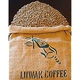 世界一高価で希少なコーヒー インドネシア コピ・ルアック焙煎したて100g(粉 中挽き)