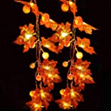 Thanksgiving Decoration 10 ft 30 LED Pumpkin Maple Leaf Garland String Lights for Halloween Thanksgiving Fall Decoration Seas