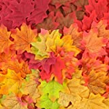 ElaDeco 1000 Pcs Artificial Fall Maple Leaves Autumn Leaf for Thanksgiving Wedding Party Events Indoor Outdoor Wreath Decorat