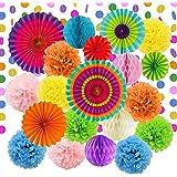 LURICO 21Pcs Fiesta Party Decorations Tissue Paper Pom Poms Flowers Paper Honeycomb Balls Paper Lanterns Hanging Paper Fan De