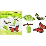 サファリ Science series Life Cycle Of A Monarch Butterfly ( Set) 622616 (並行輸入)