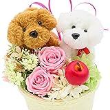 母の日のプレゼント フラワーギフト 誕生日プレゼント 花 女性 花ギフトフラワーアレンジメント トイプードルのペア