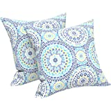 LVTXIII Outdoor Throw Pillow Covers 18 x 18 Inch, Modern Paisley Pattern Decorative Square Toss Pillow Case Pack of 2 for Hom