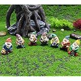 Fairy Garden Accessories Outdoor,Gnomes Garden Decorations-Mini Gnomes Fairy Garden Set Seven Dwarfs Statue for Fairy Gardens
