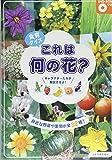 食育クイズ これは何の花?―身近な野菜や果物が全32種! DVD‐ROMつき