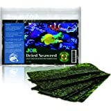 JOR Seaweed Fish Super Snack, Loved by Tangs, Angels, Bettas, Plecos, Hermit Crabs, and Snails, Dense in Vitamins, Beneficial