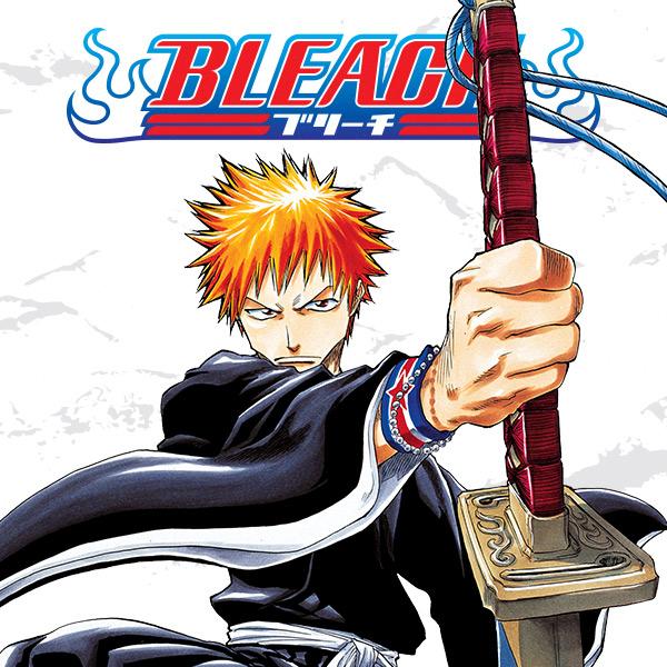 Bleach (Issues) (50 Book Series)