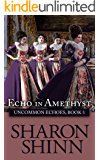 Echo in Amethyst (Uncommon Echoes Book 3) (English Edition)