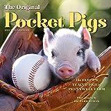 The Original Pocket Pigs Mini Wall Calendar 2022: The Teacup Piggies of Pennywell Farm