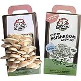 Little Acre Mushroom Kit, Harvest Gourmet Oyster Mushrooms in 7 Days, Top Gardening Gift, Unique Gift (White)