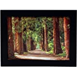 Wood Picture Frame - Wide Molding - Includes Attached Hanging Hardware and Desktop Easel - Real Glass Front - Horizontal and