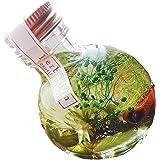 【プリザーブドフラワーLira】ハーバリウム 日本製 高さ9.5cm ギフトボックス入り 丸瓶 プレゼント ギフト 贈り物 母の日 お祝い (ハニーグリーン)