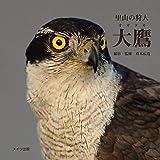 里山の狩人 大鷹