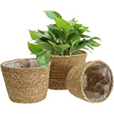 Yesland 3 Pack Seagrass Planter Basket, 10 Inches Woven Plant Containers & Flower Pots Cover for Plant Pot Basket in Indoor o