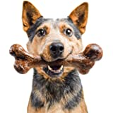 Pet Qwerks Extreme Dinosaur BarkBone Steak Flavor - Tough Chew Toy for Extremely Aggressive Power Chewers, Durable Indestruct