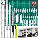 230 PCS Hobby Craft Knife Kit 215 PCS Precision Carving Blades with 2 PCS Craft Knife, Utility Knife with 11 PCS Art Blades,