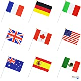 50 Countries International World Stick Flag,Hand Held Small Mini National Pennant Flags Banners On Stick,Party Decorations fo