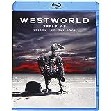 ウエストワールド 2ndシーズン ブルーレイ コンプリート・ボックス(1~10話/3枚組) [Blu-ray]