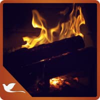 Romantic Fire Flames - Lit The Fire of Love