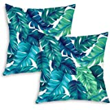 QoGoer Velvet Tropical Throw Pillow Covers - Tropical Palm Leaves Summer Decorative Square Pillow Case Soft Cushion Covers fo