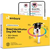 Embark Dog DNA Test Kit | Breed & Genetic Ancestry Discovery | at-Home Cheek Swab