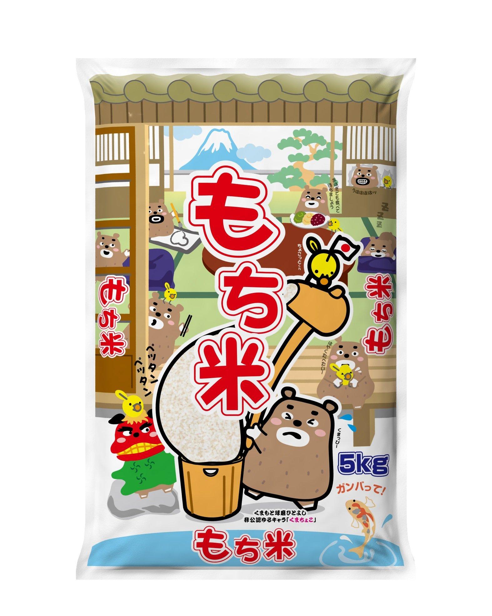 株式会社 29年 国内産 熊本県産 もち米 5kg