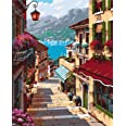 Paint by Numbers-DIY Digital Canvas Oil Painting Adults Kids Paint by Number Kits Home Decorations- Stone Steps 16 * 20 inch