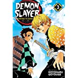 Demon Slayer: Kimetsu no Yaiba, Vol. 3 (3)
