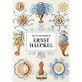 Ernst Haeckel (40)