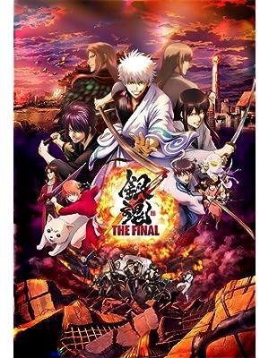 銀魂 THE FINAL(通常版) [DVD]