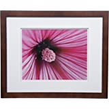 Gallery Solutions 16x20 Flat Walnut Wall Frame with Double White Mat for 11x14 Picture