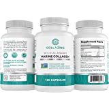 Collazing - Alaskan Wild-Caught Marine Collagen Protein Peptides with Hyaluronic Acid and Vitamin C - for Radiant Skin, Hair,