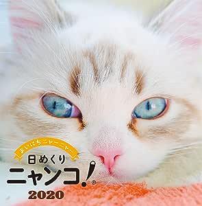 日めくりニャンコ!2020年(卓上日めくりカレンダー猫版)