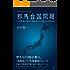 中国古代数学から読み解く 邪馬台国問題: 『九章算術』の語法で書かれていた倭人伝行路記事 (22世紀アート)