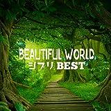 BEAUTIFUL WORLD -ジブリ BEST MIX-