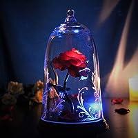 ガラスの中の魔法の光る バラ 美女と野獣 プロポーズ 誕生日 母の日 結婚祝い 記念日 女性 プレゼント プリザーブドフ…