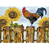 Diymood Painting Acrylic Paint by Number Kits for Kids Students Adults Beginner, Animal Plant Rooster Sunflower Fence Sky Cou